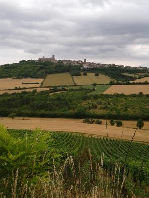 Vézelay : A la découverte des Fleurs de Bach