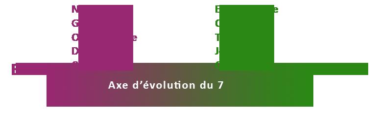 Axe d'évolution ennéagramme 7