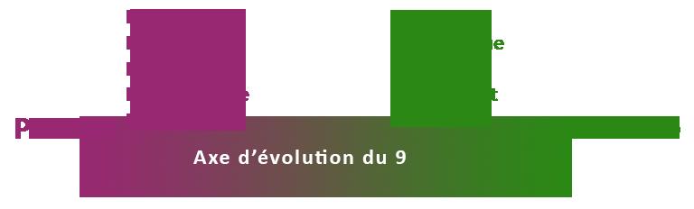 Axe d'évolution ennéagramme 9