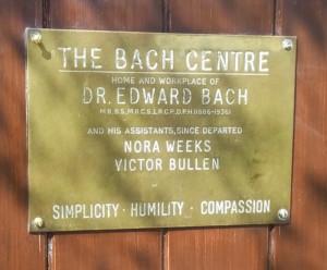 simplicite-humilite-compassion-centre-bach-borntobloom